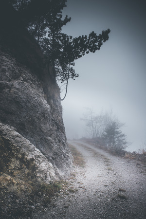 foggy weather mountain landscape - winter mood - desaturated style image