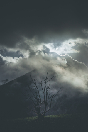 mountain moody landscape - springtime mood - desaturated style image 版權商用圖片