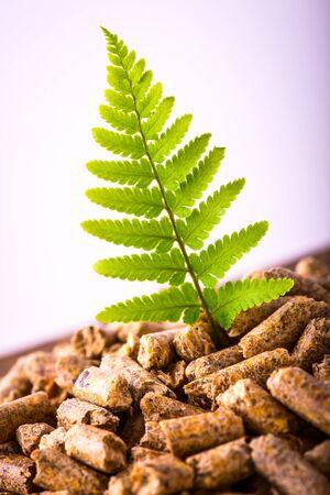 natural pellet fuel - green renewable sustainable economy Stockfoto
