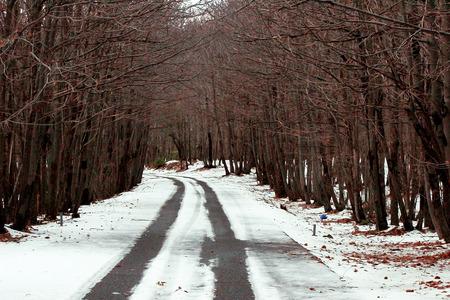 soledad: La soledad de un d�a de invierno Foto de archivo