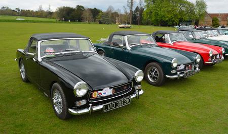 midget: Classic MG B motor cars parked on grass..