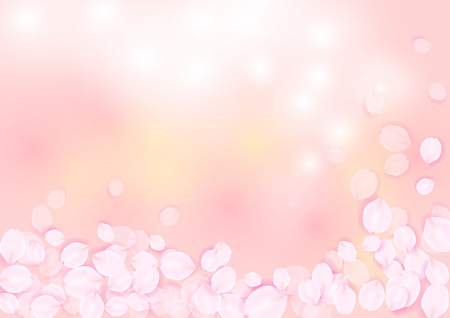 softly: Sakura petal softly