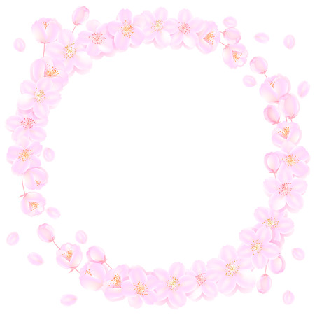 Wreath of cherry blossoms  Vector