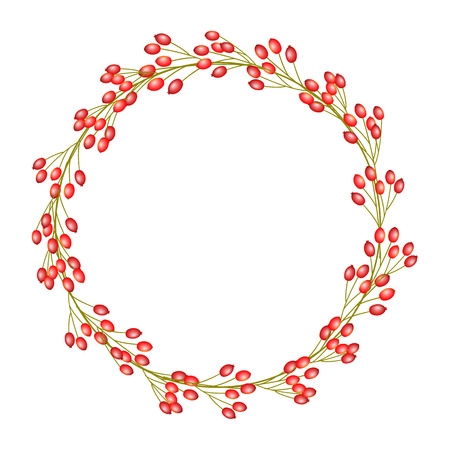 Wreath of rose hip Vector