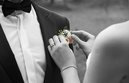 bride and groom are already wear his, her dress and standing on a park. Bride is fixing the brooch which is on grooms suit. Stock Photo