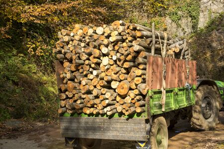 Truck is carrying the woods from forest. 免版税图像