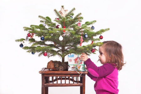 A cute young girl take a present under a christmas tree  photo