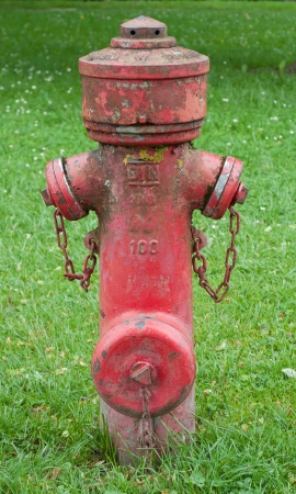 A red hydrant stands in green grass Stock Photo - 17070207