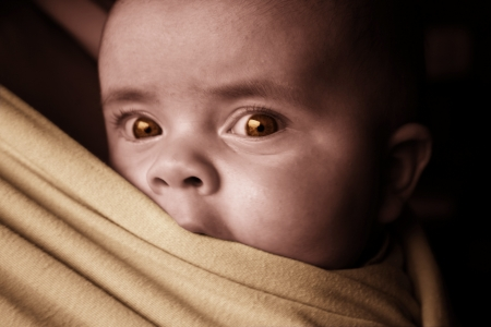 A 2 month year old baby is looking out of a babysling Stock Photo - 17081770