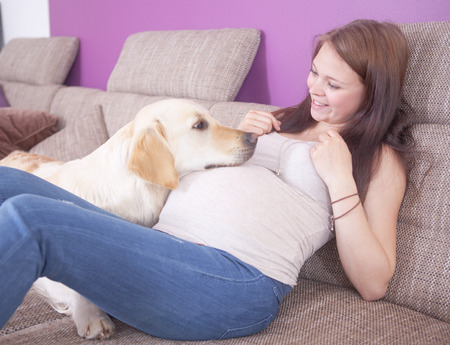 woman laying: Young pregnant woman with a sweet golden retriever.