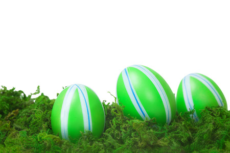 Easter Decoration with colorful eggs in a moss Isolated on White photo