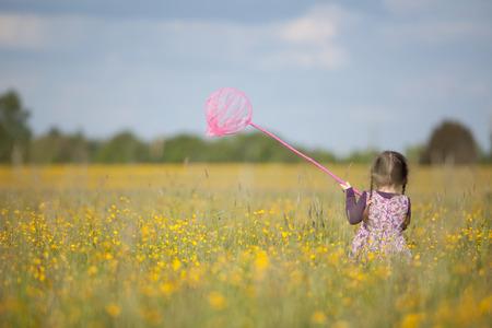 trenzas en el cabello: Vista posterior de la chica joven con el pelo trenzado y rosado de la mariposa neta en campo extenso lleno de flores silvestres amarillas