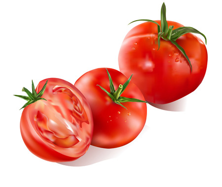 Tomatos and slice isolated on white background-realistic vector illustration