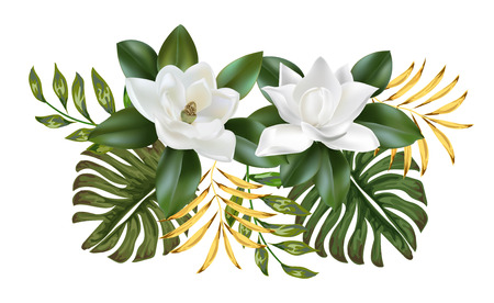 Magnolia flower and leaves on white background. Vector set of exotic tropical garden for wedding invitations and greeting card design  イラスト・ベクター素材