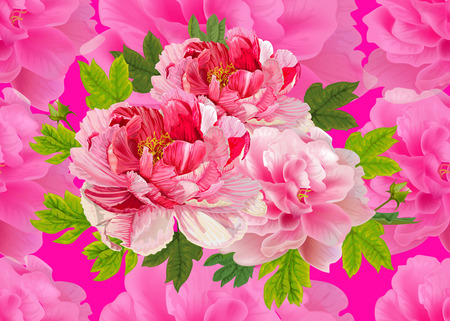 Seamless pattern,Peonies flral bouquet on chocking pink back ground,vector illustration
