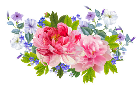 Peonies flower bouquet vector
