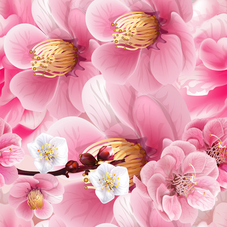 Chinese plum flowers pink color seamless background pattern,vector illustration