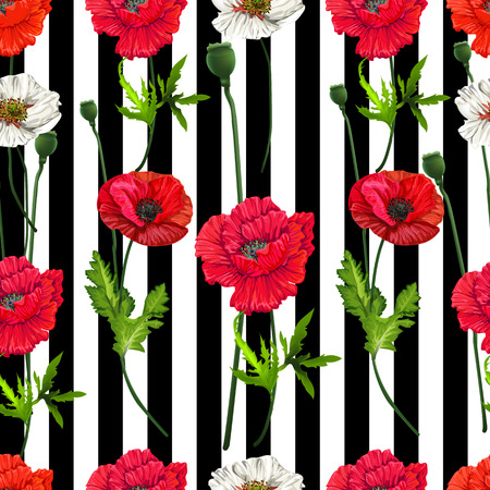 Poppy flowers seamless,Floral pattern on white and black stripe background