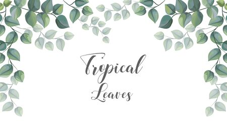 Tropical leaves on frame for texts vector illustration