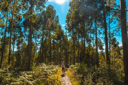 Walking along the path of the Listorreta natural park in the town of Errenteria in the park of the Peñas de Aya or Aiako Harria park. Gipuzkoa, Basque Country