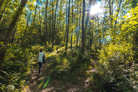 Strolling along the path between trees of the Listorreta natural park in the town of Errenteria in the park of the Peñas de Aya or Aiako Harria park. Gipuzkoa, Basque Country. In summer