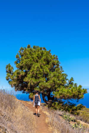 A young woman walking on the Las Tricias path in the town of Garafia in the north of the island of La Palma, Canary Islands