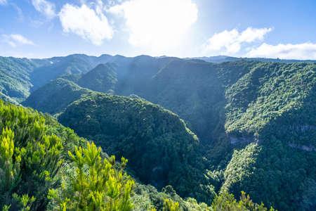 Viewpoint of the Cubo de la Galga natural park on the northeast coast on the island of La Palma, Canary Islands. Spain