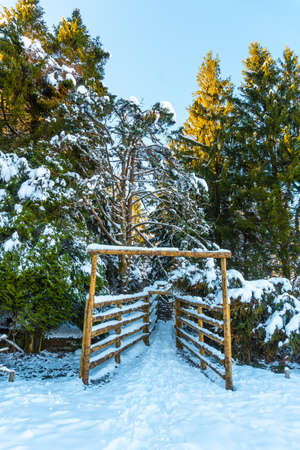 Entrance to a natural block in the snowy forest in the town of Oiartzun in Peñas de Aya, Gipuzkoa. Basque Country