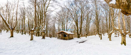 Panoramic view of the refuge next to the trees of the snow-covered Oianleku Natural Park in the town of Oiartzun, next to Peñas de Aya in winter, Gipuzkoa. Basque Country