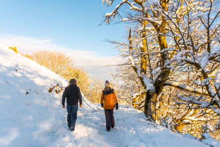 Walking towards the Oianleku natural park, a snow-covered beech forest in the town of Oiartzun in peñas de aya, Gipuzkoa. Basque Country