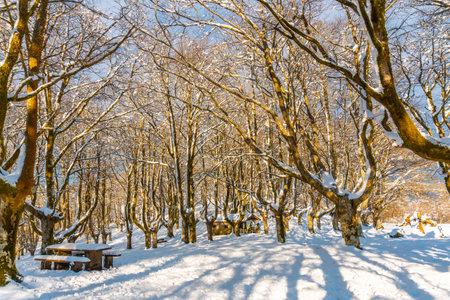 Beautiful refuge in the Oianleku natural park in the town of Oiartzun next to Peñas de Aya, Gipuzkoa. Basque Country