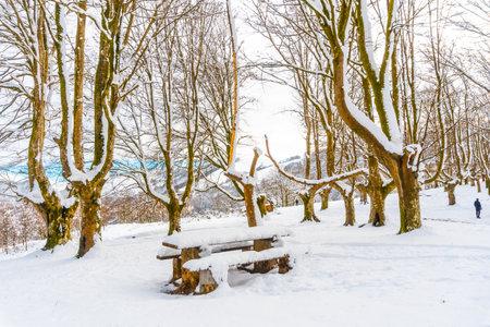 The snow-covered Oianleku natural park in the town of Oiartzun, next to Peñas de Aya in winter, Gipuzkoa. Basque Country Standard-Bild