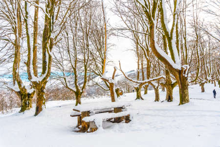 The snow-covered Oianleku natural park in the town of Oiartzun, next to Peñas de Aya in winter, Gipuzkoa. Basque Country