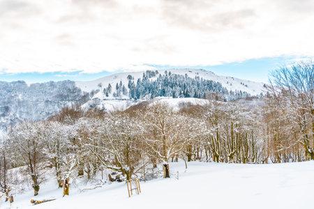 The Oianleku natural park in the town of Oiartzun next to Peñas de Aya, Gipuzkoa. Basque Country Standard-Bild