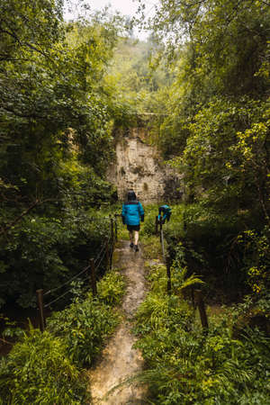 Two hikers in raincoats walking through a forest in the rain. Spring on the road from Ispaster to Lekeitio, landscapes of Bizkaia. Basque Country
