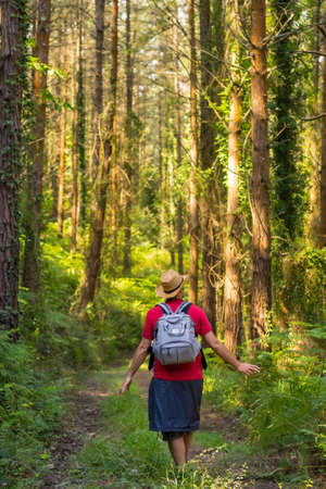 A young traveler with his back turned with a hat and looking at the forest pines, hiker lifestyle concept, copy and paste space, forests of the Basque country. Spain