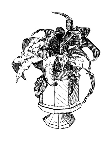 line art illustration of a potted plant in Albrecht Durer style