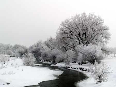 Winter River: Big Thompson River frosted in Winter Stock Photo - 2129960