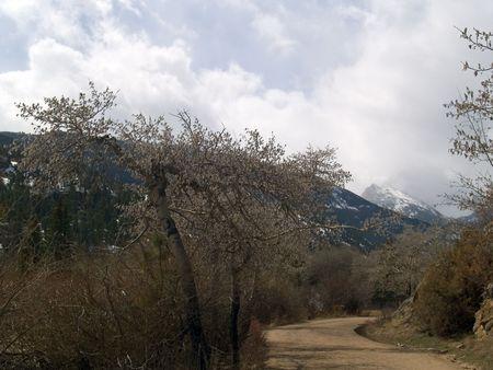 stark: Stark Road -  Rocky Mountain National Park,