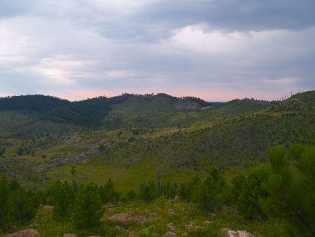 renewal: Renewal - Black Hills of South Dakota.