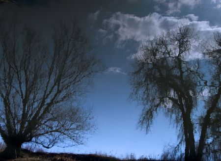 distortion: Liquid Sky - An image of the still surface of the Poudre River.