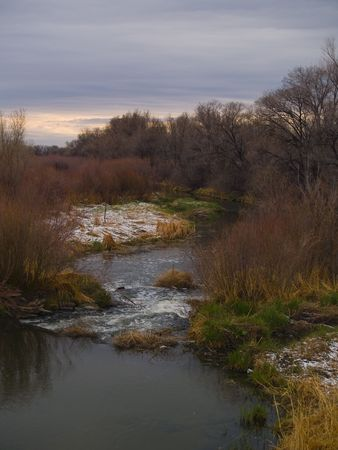 poudre river: Spring Snow on the banks of the Poudre River