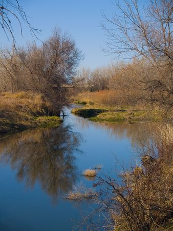 poudre river: The still Poudre river as the banks begin to show signs of Spring