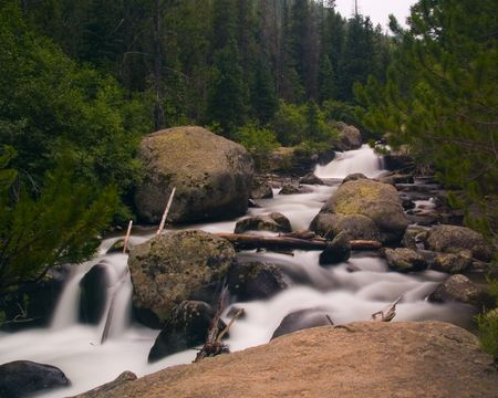 The white rushing St. Vrain River racing through the green forests of Rocky Mountain National Park.