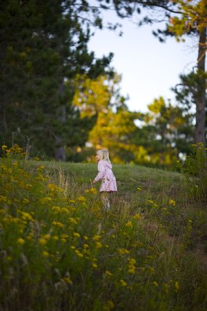 A young child exploring a hill in the forest covered with wildflowers Stock Photo - 3459062