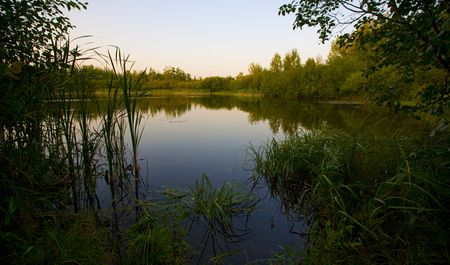 north woods: Late evening pond in the north woods of Minnesota