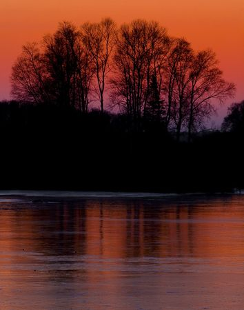 winter sunrise: Trees over frozen Wild Rice Lake, in a sunset image from the North Woods of Minnesota in November