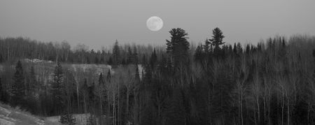 north woods: Full moon over forested hills in the north woods of Minnesota
