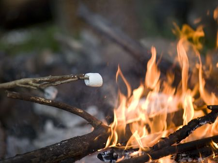 Roasting marshmallow over a raging campfire