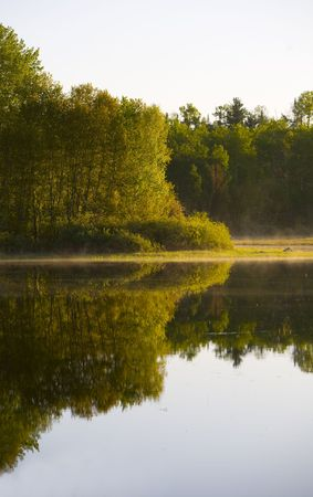 Morning light on the green shore of Island Lake in Northern Minnesota Stock Photo